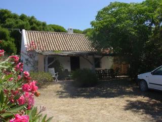 Casa en Caños de Meca (Cádiz) junto al Parque Natural y frente al mar - Facinas vacation rentals