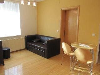 Apartment for you & auto - Zagreb vacation rentals