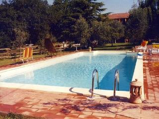 Villa in the garden 2000mq with swimming pool 5x12 - Bassano in Teverina vacation rentals