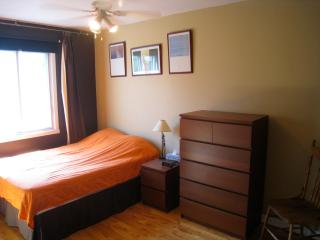 2 balcony St Dominique Mile End/ Plateau Montreal - Montreal vacation rentals