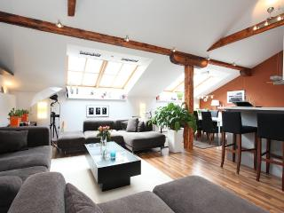 Big Cozy Top Floor Apt. Sauna Jacuzzi Air/Con WiFi - Prague vacation rentals