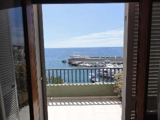 Wonderful Apartment in front of the sea - Puntalazzo vacation rentals