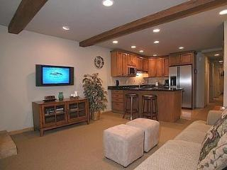 Beautiful Condo in the heart of Aspen - Aspen vacation rentals
