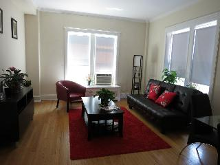 Nice 1 BR in Lincoln Park, Chicago - Chicago vacation rentals