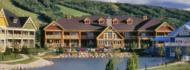 Lodge Suite Blue Mountain quiet escape - Image 1 - Collingwood - rentals