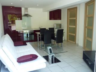 Domaine de Couchet New Luxury Apartment - Languedoc-Roussillon vacation rentals