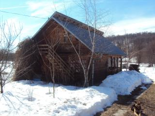 Log house for short term/long term holidays - Stefanesti vacation rentals
