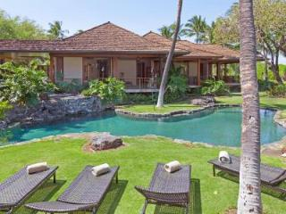 Oceanfront Nani Paniau with phenomenal views,  unique natural pool on lush grounds - Puako vacation rentals