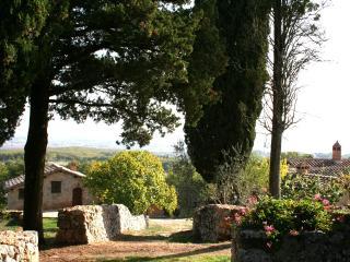The Grainery (Agriturismo Il Caggio, Siena) - Siena vacation rentals