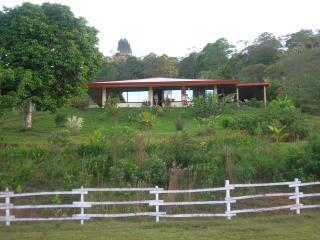 Lovely home on farm near Turrialba - Turrialba vacation rentals
