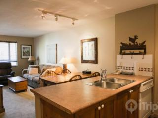 Eagle Lodge lovely 1 Bed, 1 bath condo in Heart of Village Unit # 222 - British Columbia Mountains vacation rentals