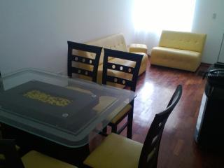 Comfy Apartment - Magdalena del mar, Lima - Lima vacation rentals
