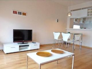 Brand new 1bdr apartment w/pool in Nuñez/Belgrano - Buenos Aires vacation rentals