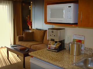 Las Vegas near the Strip - Las Vegas vacation rentals