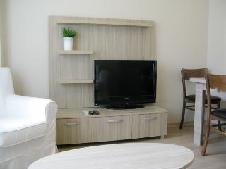 Cozy 1+1  Fully Equipped Apartment! - Istanbul vacation rentals