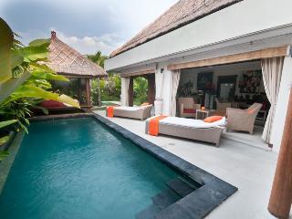 Nice Villa Seminyak Bali 2 bd - Ungasan vacation rentals