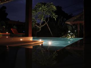 Nice Villa Andrea Bali 3bd - Ungasan vacation rentals