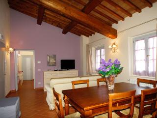 Apt. Michelangelo - Florence Hills - Florence vacation rentals