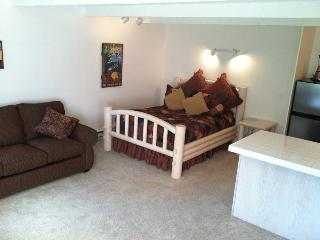 Sun Valley Atelier Condo in an EXCELLENT LOCATION! - Sun Valley vacation rentals