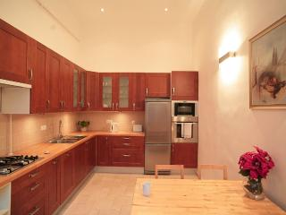 BEAUTIFUL CENTRAL OPERA APARTMENT! - Budapest & Central Danube Region vacation rentals