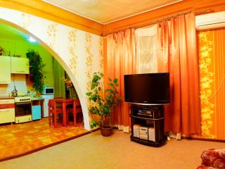 Bright 1 bedroom apartment in the centre - Kharkiv vacation rentals