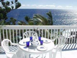 Oceanfront Home in Beautiful Tropical Area - Pahoa vacation rentals