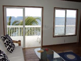 Oceanfront 1bd in tropical area - Pahoa vacation rentals