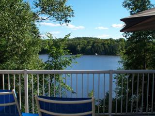 Beautiful Modern LAKESIDE Cottage in Haliburton - Dorset vacation rentals