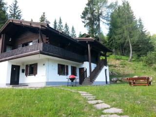 Studio Apartment in Austrian Alps - Weissensee vacation rentals