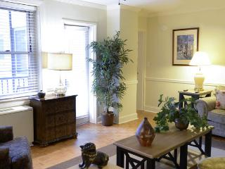 Large 2 Bed in the Center of Downtown Atlanta (sleeps upto 7!) - Atlanta vacation rentals
