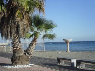 Lovely holiday home near the beach (100 mts) - San Bartolomeo al Mare vacation rentals