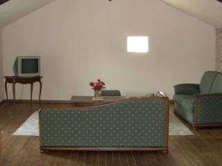 futuroscope la ferme de chez bertholeau - Les Forges vacation rentals