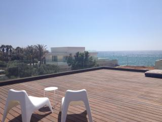 4 bedroom house next to the beach herzelya pitch - Israel vacation rentals