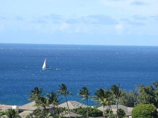 Oceanview The Ridge at Kapalua - Lahaina vacation rentals