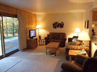 Lake Forest Resort - Distinctive lakeside condos - Eagle River vacation rentals