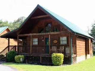 Best of the Best - Pigeon Forge vacation rentals