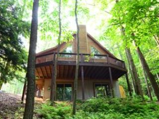 Rustic Retreat - Western Maryland - Deep Creek Lake vacation rentals