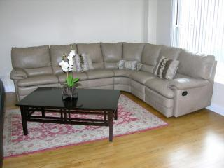 Entire condo in Chicago 2BR/2BA - Chicago vacation rentals