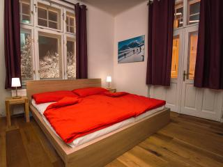 CasaNeve - Apartment Livia - Austria Skiing - Bad Gastein vacation rentals