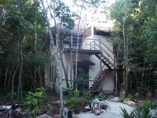 Treetop Palapa in the Jungle - Quintana Roo vacation rentals