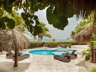 3 Bedroom Ocean Front Villa at Cap Cana - Punta Cana vacation rentals