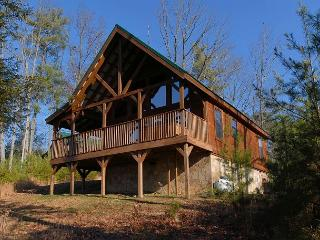 Cabin in the Birds Creek area WOW !! WHAT A CABIN 255 - Sevier County vacation rentals