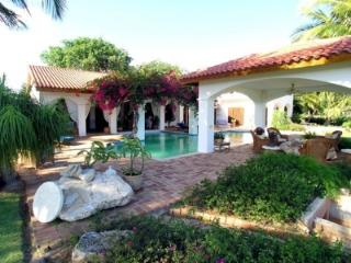 Magnificent Lux Villa, 2nd Green, Teeth of the Dog - La Romana vacation rentals