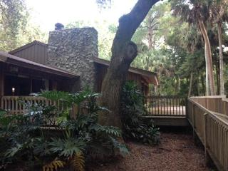 Hammock House on the Wekiva River - DeLand vacation rentals