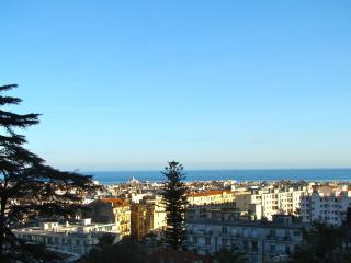 Superb Nice Apartment with a Terrace and Grill - Nice vacation rentals
