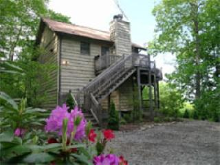 Affordable! Pet Friendly! Mountain Views! Spa! - Maggie Valley vacation rentals