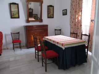 Casa Tipica en el pueblo de Marchena, Sevilla - Marchena vacation rentals