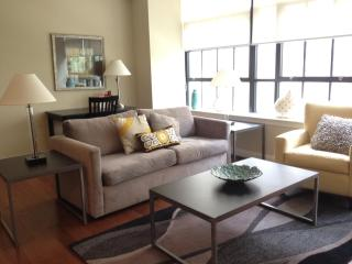 Center City Philly. Relax in Luxury and sleeps 6 - Pennsylvania vacation rentals