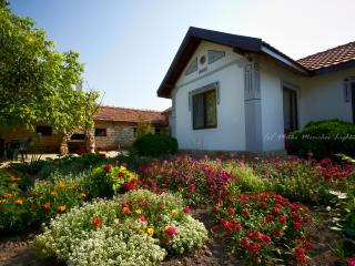 Levana Guest House - Bulgaria vacation rentals