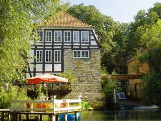 Schaumburger Riviera - Porta Westfalica vacation rentals